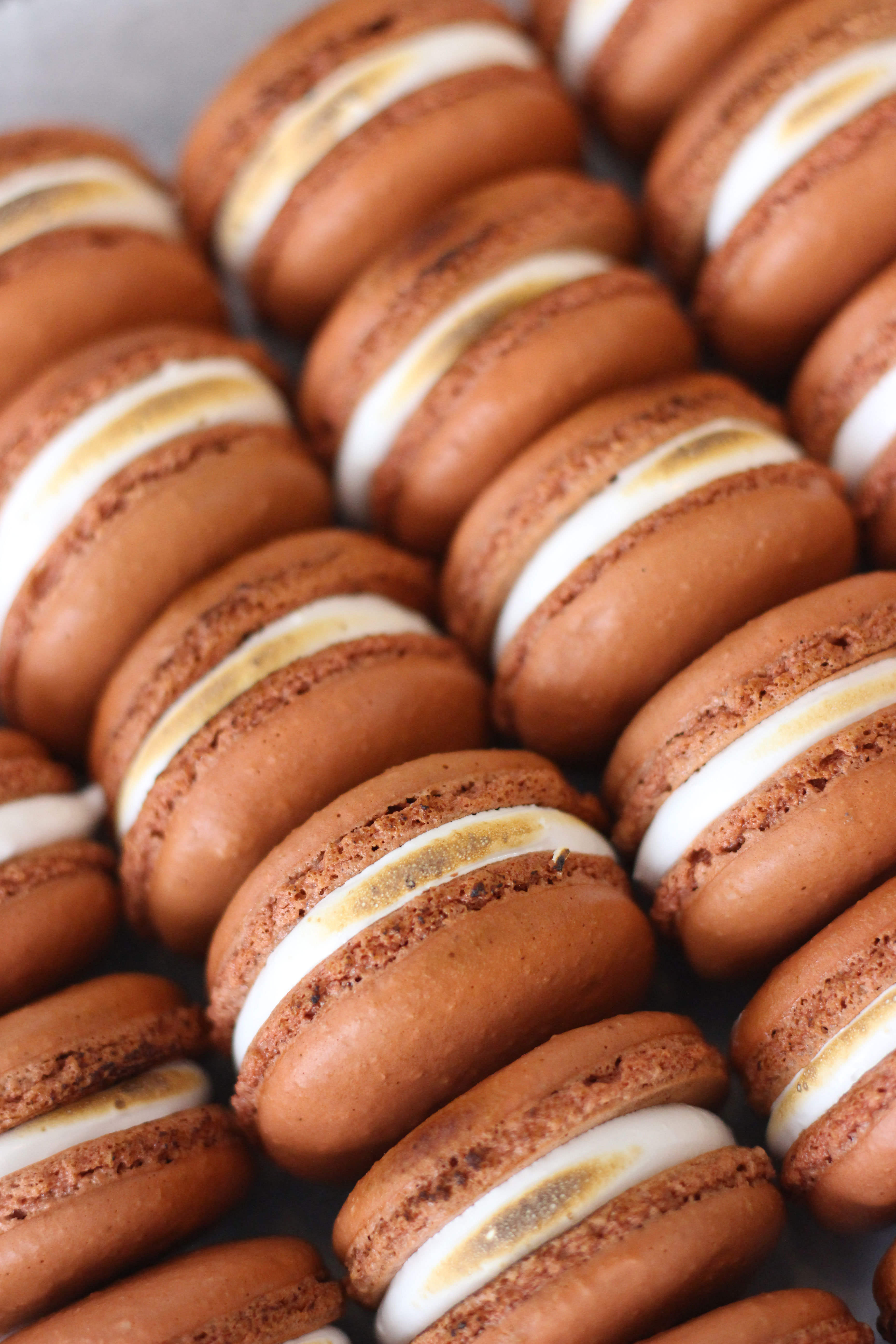 smores macarons from french bakery in northern nj cafe pierrot