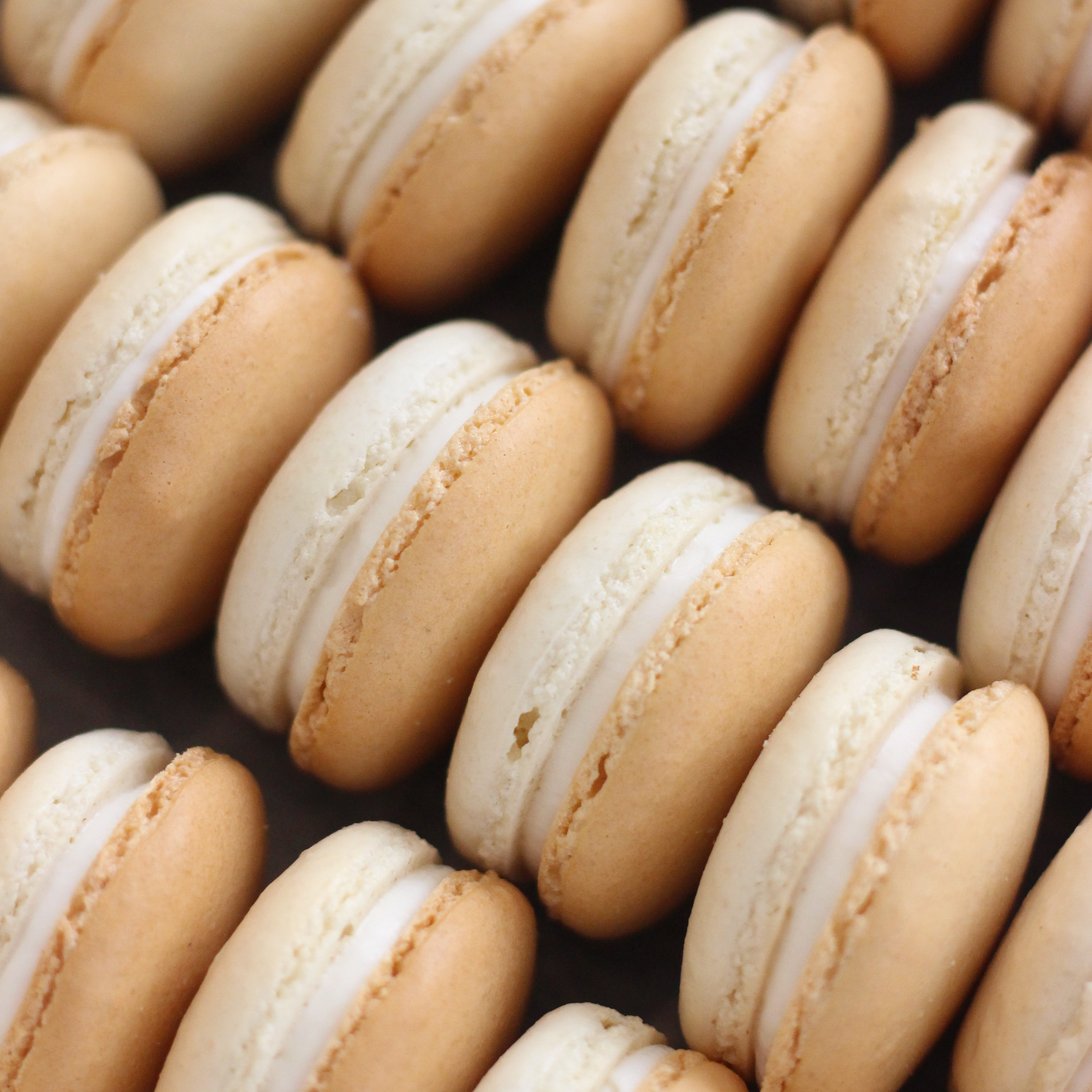vanilla bean macarons from French Bakery in sussex county nj cafe pierrot